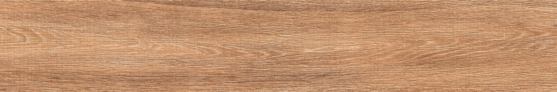 Apricot Brown Image